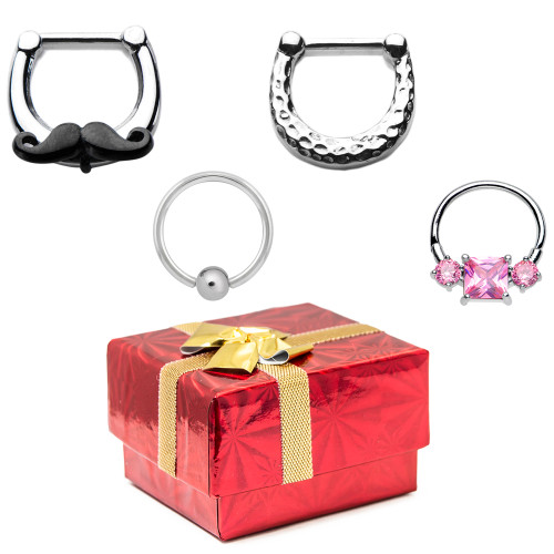 Holiday Gift Set - 18ga Septum Cartilage Clicker Combo Pack - 316L Surgical Steel + Gift Box
