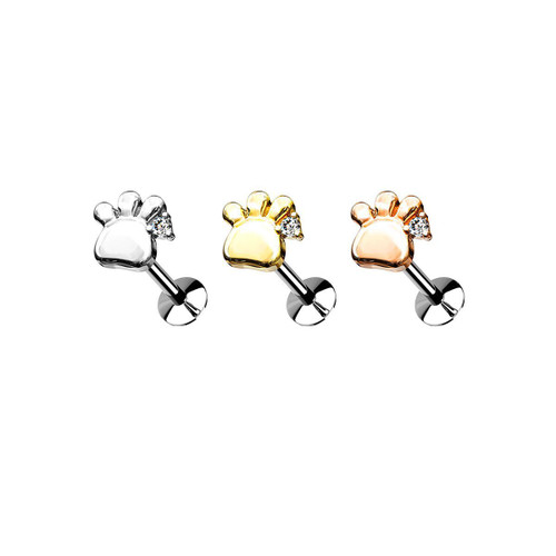 Labret Flat Back Studs For Ear Cartilage and Nose Paw Design Threadless Top 3 Surgical Steel Push in Style