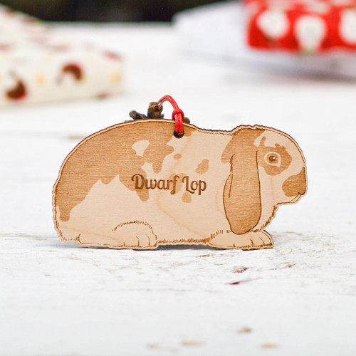 Personalised Dwarf Lop 2 Rabbit Decoration