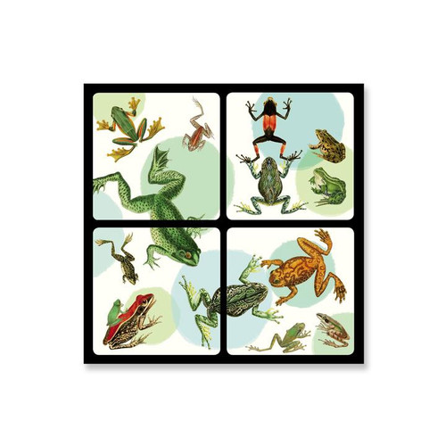 Alibabette Editions Set of 4 Frogs Coasters