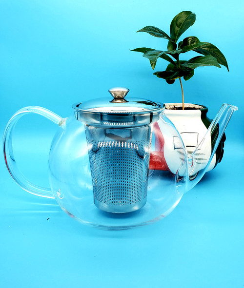 BOROSILICATE GLASS CHINA TEA POT STAINLESS STEEL 1000ML
