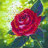The Sacred Rose Energy Painting - Giclee Print
