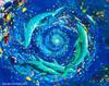 Dolphin Vortex - The Healing World