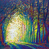 Cathedral Of Light - Divine Revelations Print