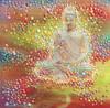 Buddha's Light - The Transformation