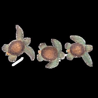 Baby Turtles Set of 3 C833
