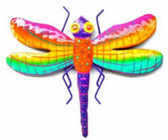Exotic Dragonfly