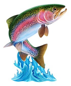 Trout Metal Wall Art