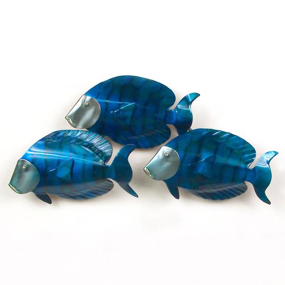 School Of Blue Tangs