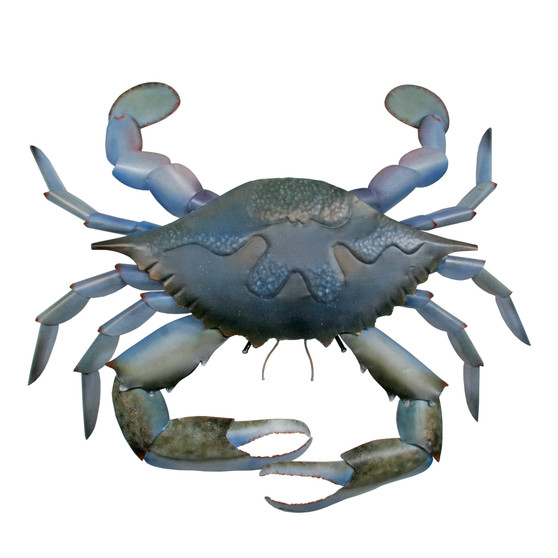 Blue Claw Crab Metal Wall Art