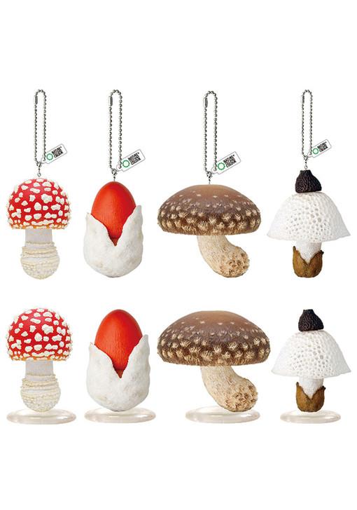 Mushroom LED Light Blind Box 1 of 8 Collectible Figurines