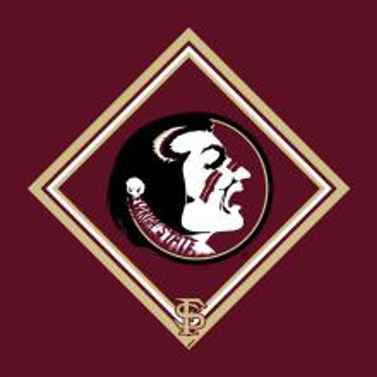 Collegiate Microfiber Cloth, Florida State University