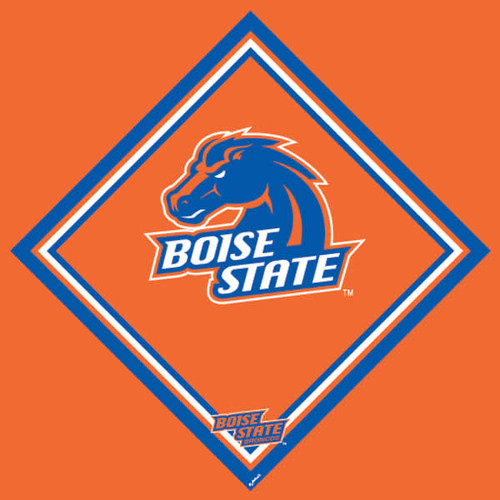 Boise State University Cleaning Cloth