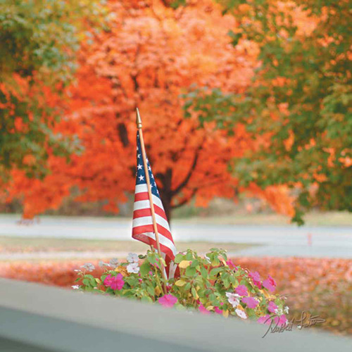 "American Flag Photography Cleaning Cloth ""Autumn Flag"""