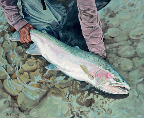 Catch & Release Artwork 240-68a-4 Micro Fiber Cleaning Cloth