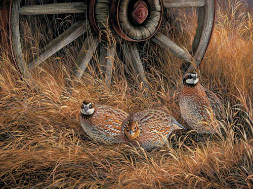 Birds Hunting Theme 240-34b-2 Artwork Micro Fiber Cleaning Cloth