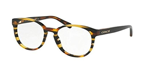 Coach Designer Reading Glasses HC6102F-5440 in Black Amber Stripe 53mm