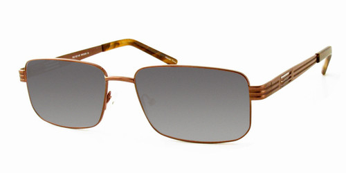 Dale Earnhardt, Jr. 6765 Designer Reading Sunglasses in Brown