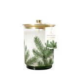 Frasier Fir Heritage Medium Pine Needle Luminary Candle