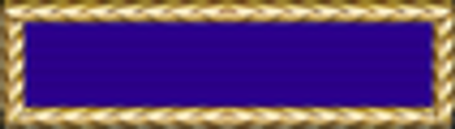 Air Force Presidential Unit Citation (PUC)