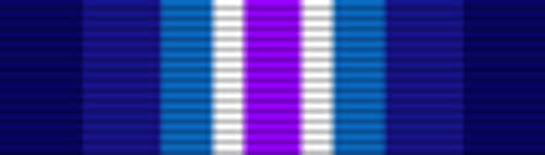 Coast Guard  Restricted Duty Ribbon