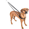 The Freedom No-Pull Harness- Red