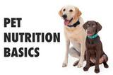 Pet Nutrition Basics