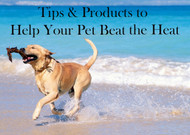 Tips & Products to Help Your Pet Beat the Heat