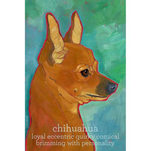 Ursula Dodge Chihuahua