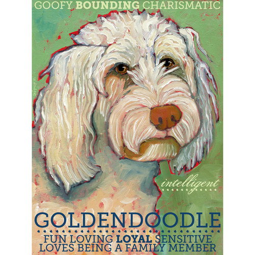 Ursula Dodge Goldendoodle