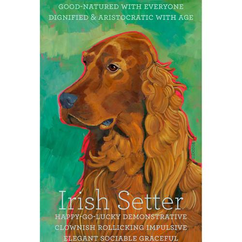 Ursula Dodge Irish Setter