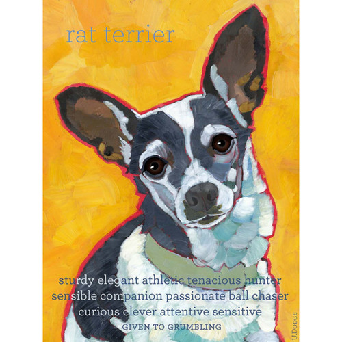 Ursula Dodge Rat Terrier