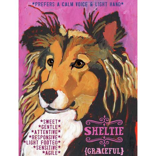 Ursula Dodge Shetland Sheepdog