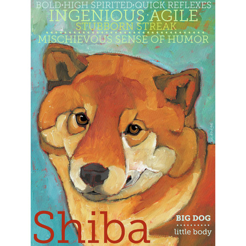 Ursula Dodge Shiba Inu