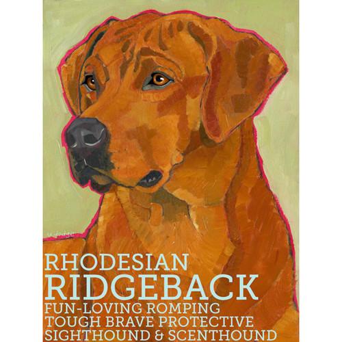 Ursula Dodge Rhodesian Ridgeback