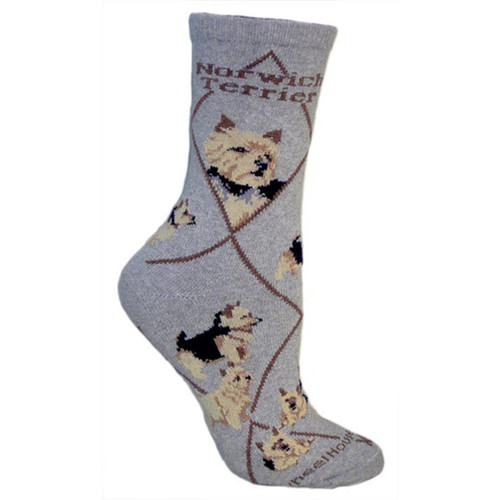Wheel House Norwich Terrier Socks