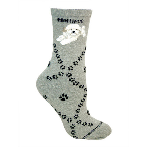 Wheel House Maltipoo Socks