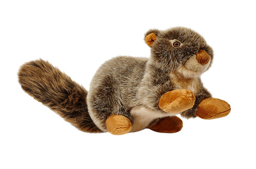 Fluff & Tuff Nuts the Squirrel