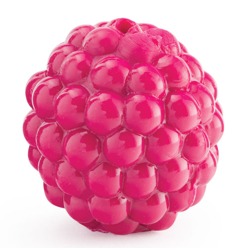 Tiny Raspberry Planet Dog Toy
