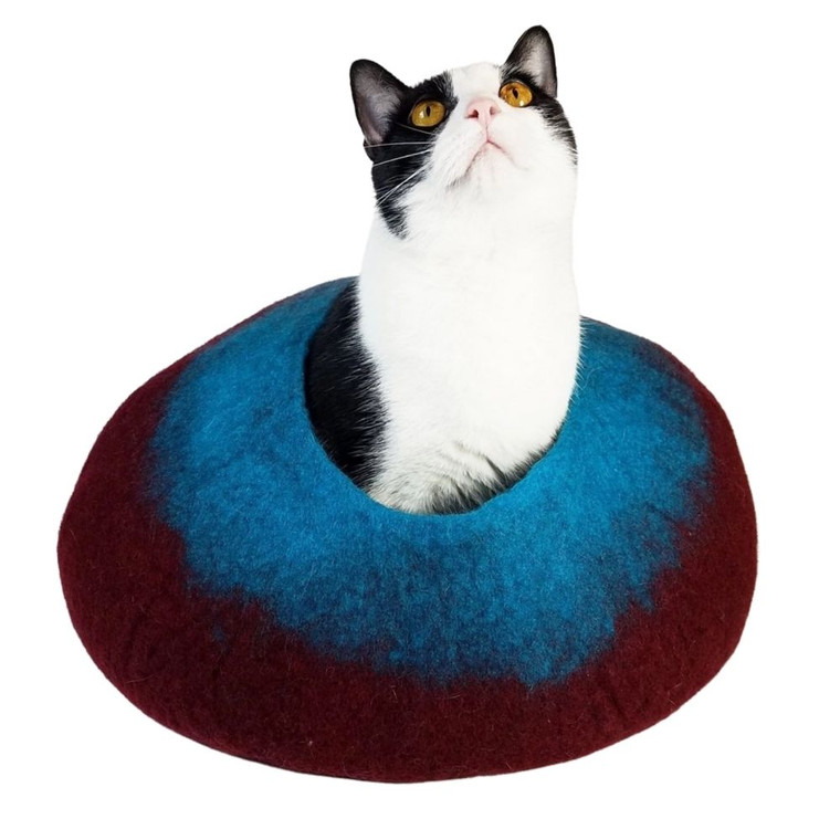Walking Palm Maroon & Teal Cat Cave