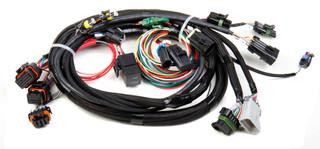 TPI/STEALTH Ram Main harness for Avenger EFI/HP EFI/Dominator EFI, Holley EFI