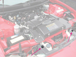 93-02 Camaro/Firebird Hood Adjust Rubber Bumper Stop, PLASTIC WITH CAP, CENTER FRONT Reproduction