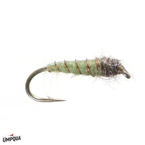ELECTRIC CADDIS
