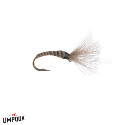 Tungsten Zebra Midge Rust Size 18 or 20 Umpqua