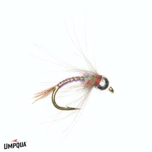 RAINBOW WARRIOR CDC TUNGSTEN
