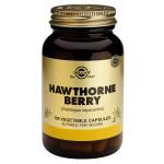 Hawthorne Berry