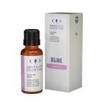 Lavender Spike (Organic)