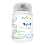 Phyto B