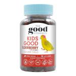 Kids Good Elderberry + Ivy Extract Ills & Chills