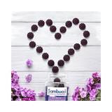 Black Elderberry Gummies